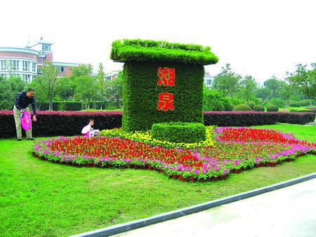 """设在南江公园的立体花坛""""圆梦湘湖"""""""